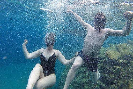 Tour de natación y snorkel