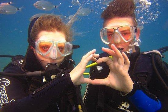 Scuba Diving Under Water Museum