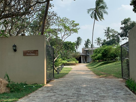 Swimming Pool with kids pool - Picture of Anodawa Boutique Villa, Tangalle