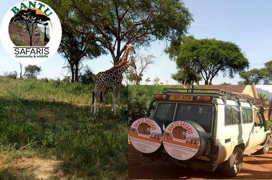Kabale, Uganda: Our Safari 4X4 Vehiche