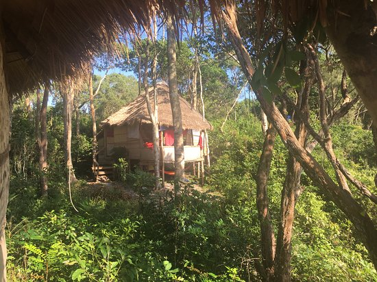 Koh Ta Kiev, Kambodscha: The bungalow in the trees