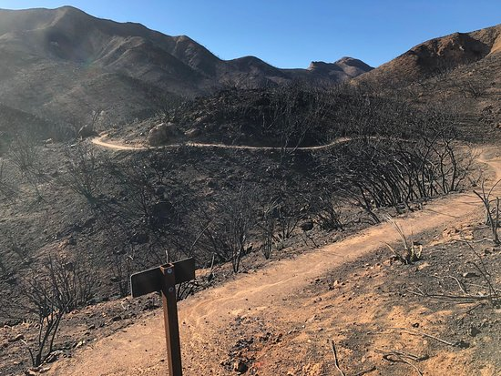 Agoura, Καλιφόρνια: Destruction from Woolsey Fire in November 2018