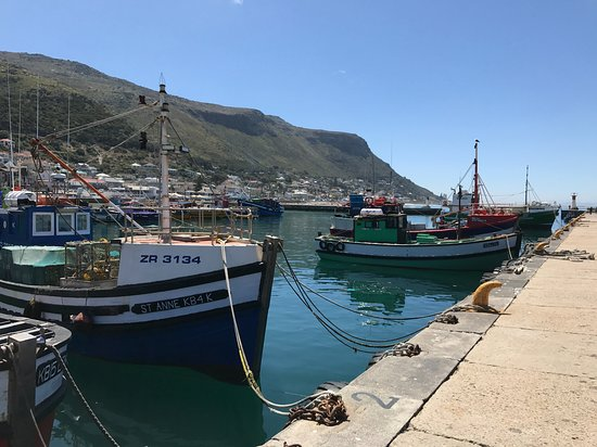 Seaviews From Nude Bb - Picture Of Cape Town, Western Cape - Tripadvisor-2886