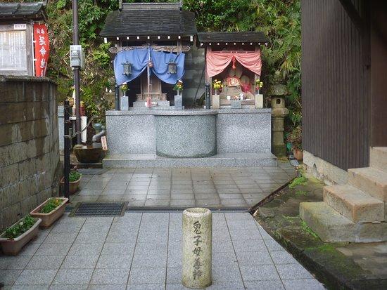 Kishibo Zenshin