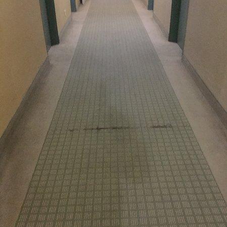 Holiday Inn LaGuardia Airport: Room #716