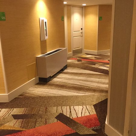 Holiday Inn Austin-Town Lake: Room #1207
