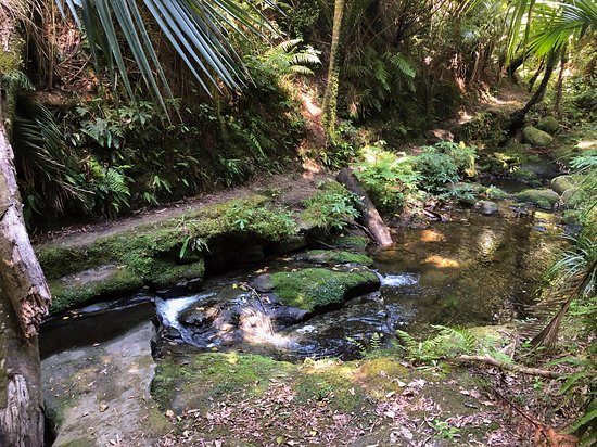 Morere Hot Springs: stream talks to you all the way