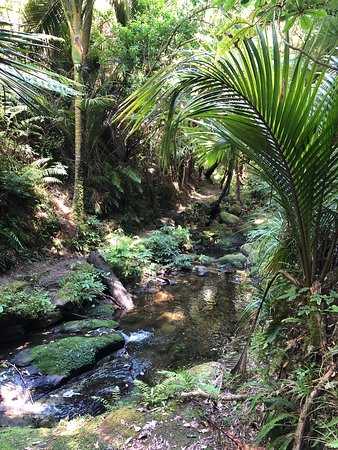 Morere Hot Springs: stream on the way