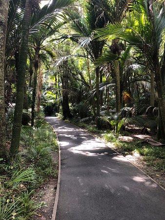 Morere Hot Springs: start of the bush wlaks