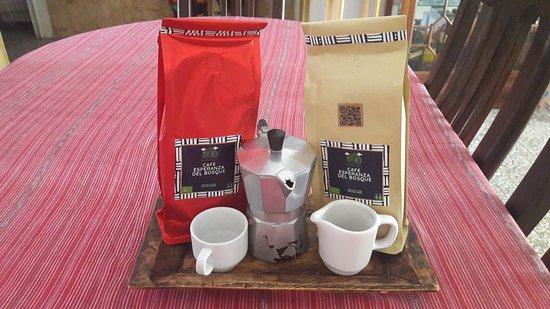El Progreso Department, Guatemala: El mejor café lo encuentra en Guatemala