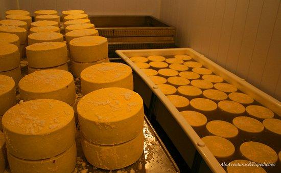 Estrada Real-Visita ao produtores de queijo Tour Gastronomico