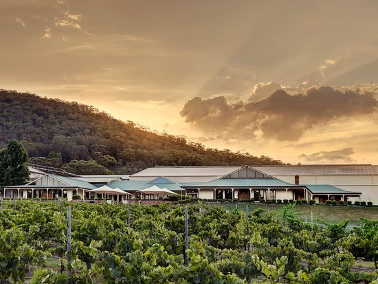 Pokolbin, Austrália: A photo of the Mount Pleasant Winery and Cellar Door in the late afternoon with the sun peaking over the Brokenback range
