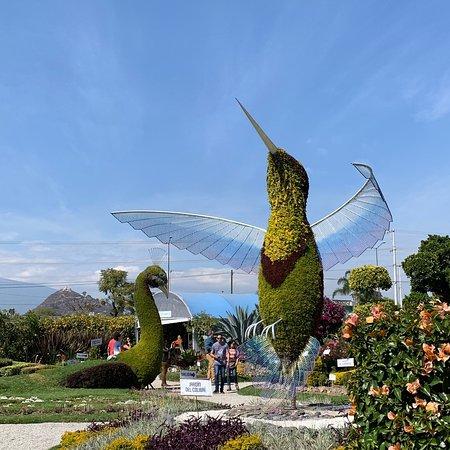 Jardin Magico