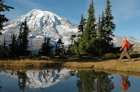 Mt. Rainier Small-Group Tour from...