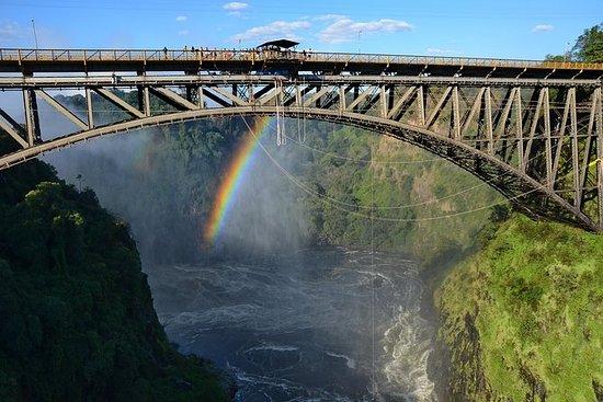 Bungee Jump, Bridge Swing o Zipline...