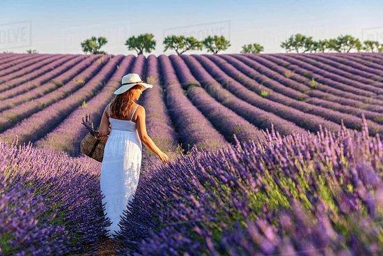 Provence og Lavander - privat og...