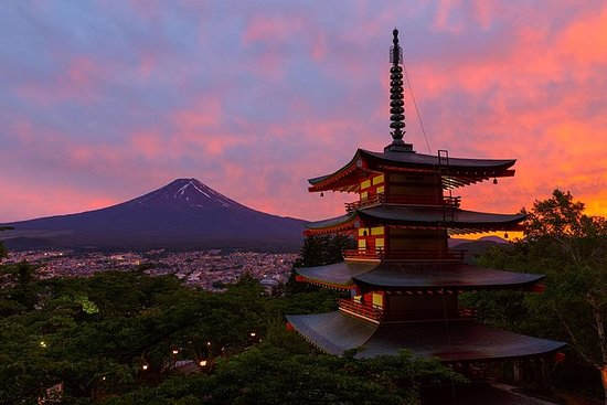 1Day Private Charter,Mt.Fuji and...