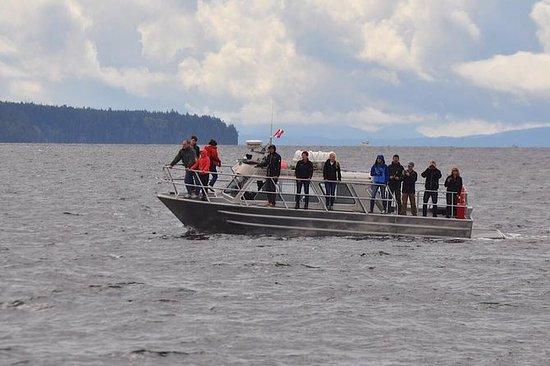 Excursion en bateau couvert...