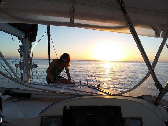 Vava'u Islands, Tonga: Greet the Drawn in Paradise