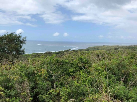 Sigatoka Sand Dunes National Park: View of the beach from top