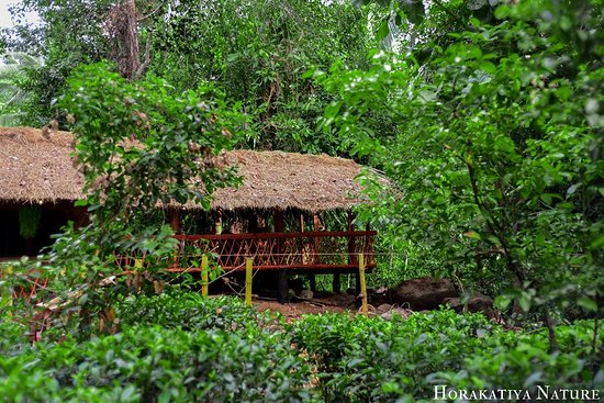 Balapitiya, Sri Lanka : getlstd_property_photo