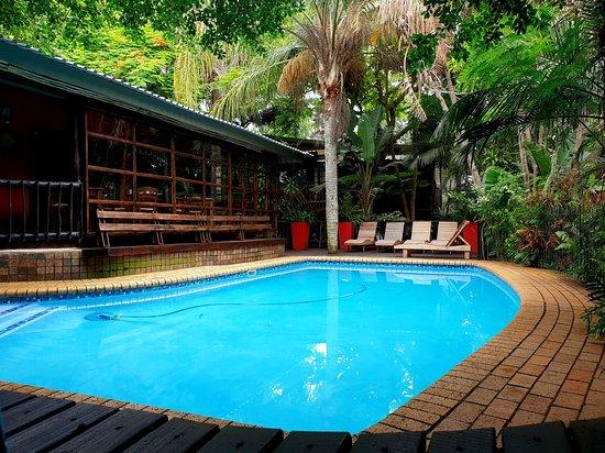 It's Like a Giant Tree House - Review of Umlilo Lodge B&B