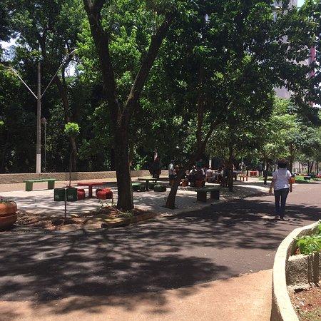 Bosque Municipal Marechal Candido Rondon
