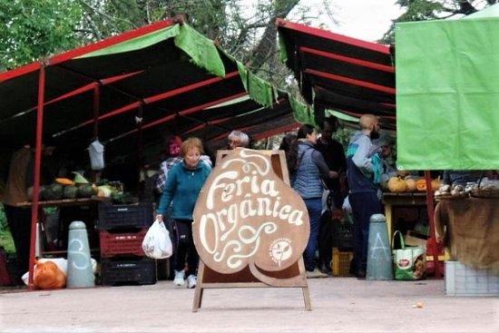 מונטבידאו, אורוגוואי: Feria Parque Rodo, se realiza todos los domingos