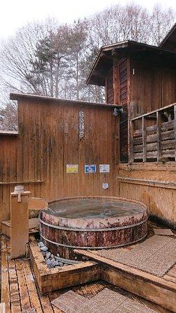 Hishino Onsen Tokiwakan: 菱野温泉 常盤館
