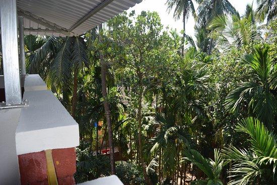 Balcony - Picture of Oasis Resort, Diveagar - Tripadvisor