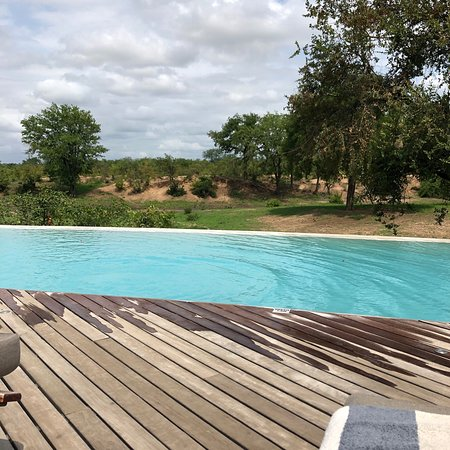 Ngala Private Game Reserve Foto