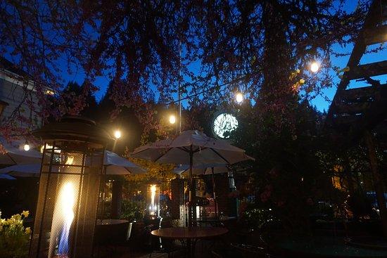 Occidental, CA: Union Hotel Courtyard. Redbud Blossoms.