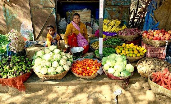 Excursions Udaipur