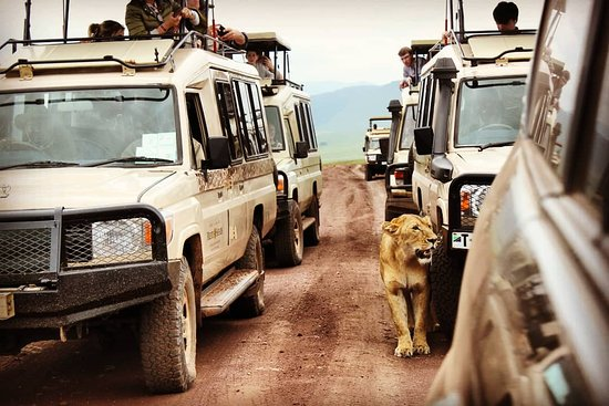 Staajabu Africa