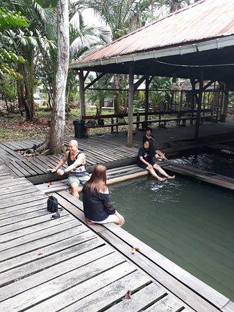 Serian, Malaysia: Panchor Hot Spring / 40km
