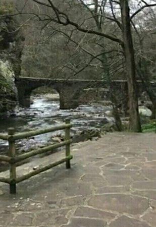 Province of Guipuzcoa, Spain: Puente de las Brujas, en el Valle de Leizaran. Tiene su leyenda.. Pero ahora mismo no la recuerdo bien.