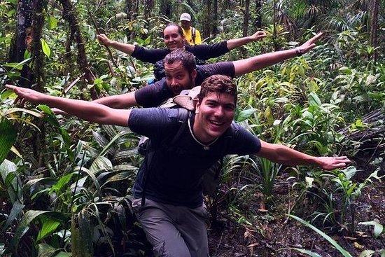 Floresta Amazônica Cuyabeno de 4 dias