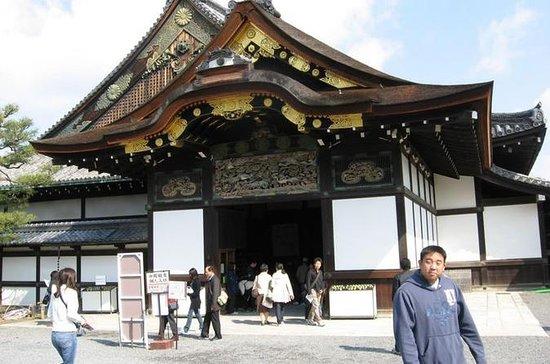 Visita al Templo Todaiji, el Parque...