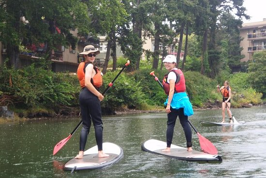 Tour Stand-Up Paddleboard di Victoria