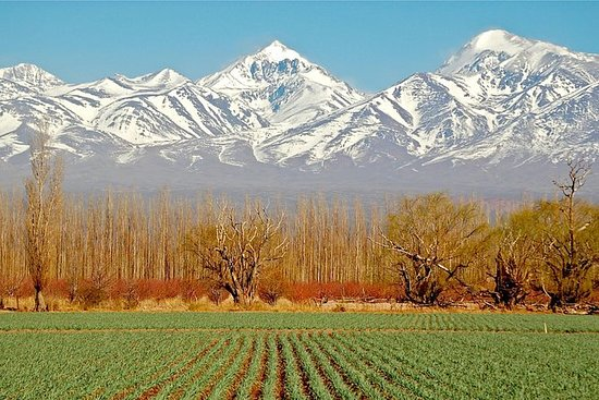 4-Day Trip in Mendoza and The Andes