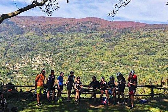 デルファイ、メテオラ&ペリオンでの8日間のハーフボードバイク&ハイキング休暇