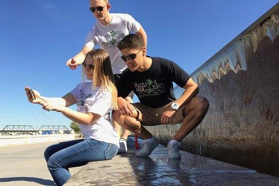 Little Rock Puzzling Adventure