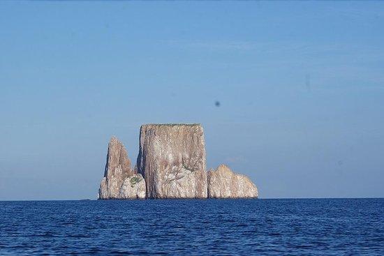 Excursión de 5 días a Galápagos en la...