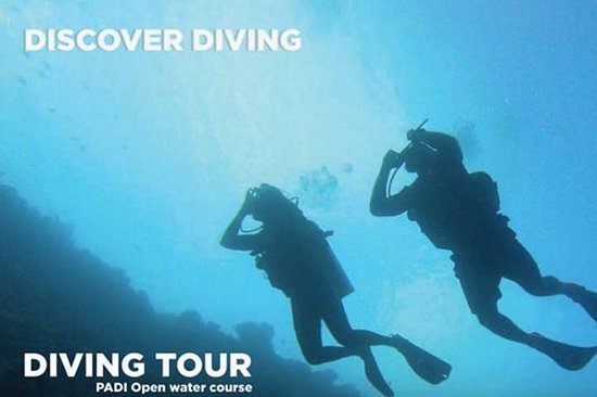 Discover Diving Tour in the Maldives...
