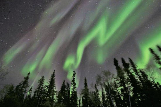 Yellowknife Northern Lights Tour...