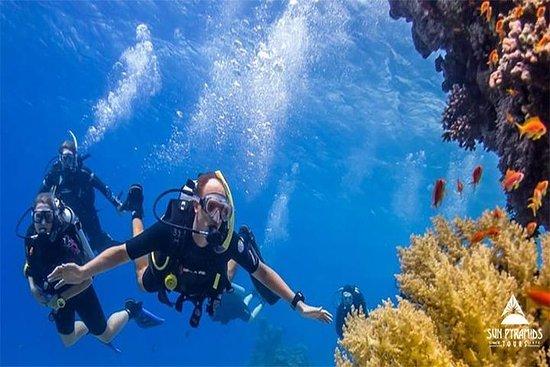Mejor Snorkel en Taba Egipto