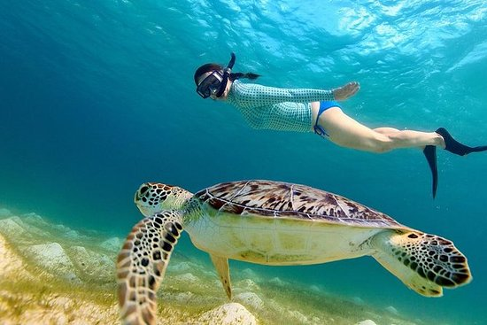 3 Gili Lombok Snorkeling Tour with...