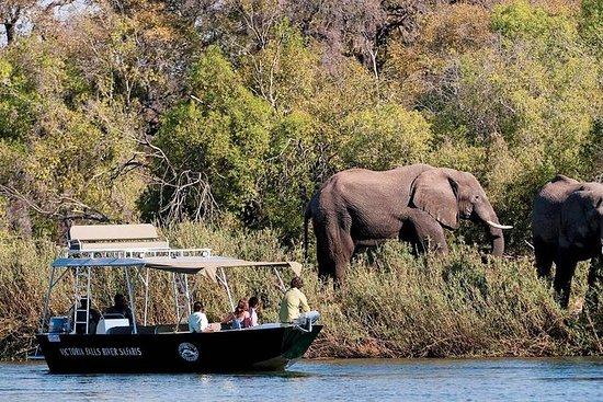 Safari River Cruise