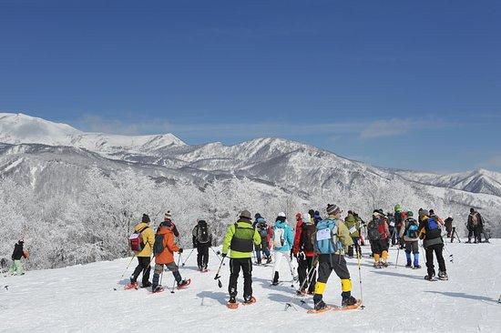 Hakuba Iwatake Snow Field