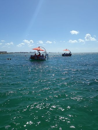 Looking for a boat rental in Aruba? Be your own captain with our Boats! Rent your own Aqua Donut boat and go sightseeing, snorkeling, or just relax out on the water. Rent a Boat through Octopus Aruba website is really easy. https://octopusaruba.com/reservations/